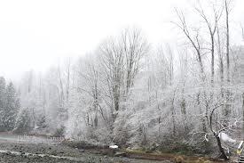 新年の雪景色