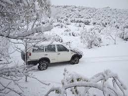 雪景色車白