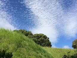 秋の青空と緑の丘